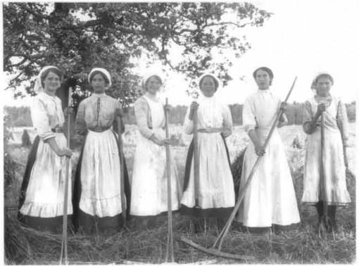 Skördearbete på herrgården, ca 1920.